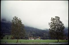 on the road (floripondiaa) Tags: fujica stx1 film 35mm florishootsfilm germany