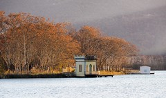 Little houses on the lake (jocsdellum) Tags: llac estany banyoles lake agua water winter autunm fall littlehouses pesquera