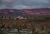 El guggenheim Riojano-Alaves 🍇 (pascual 53) Tags: bodegas contrastes colores titanio viñas vino bodega canon 5ds 70200mm marquesderiscal riojaalavesa ocasos iglesia elciego otoño
