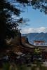 Itsukushima Shrine (hirorin2013) Tags: 広島 宮島miyajima hiroshima japan jp