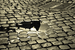 pozzanghera con giordano bruno (solo a roma) Tags: italia roma lazio canon 350d giordanobruno monumento pozzanghera riflesso sampietrini tombino acqua centrostorico statua campodefiori