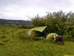 Попали в цейтнот. Место ночлега далось непросто, в итоге встали на пастбище коров. Утром ливануло как из ведра.