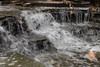 Waterfall (x-raymond) Tags: waterfalls water rock tree waterfall outside slate leaf