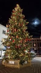 Christmas Tree (grinnin1110) Tags: mainz de deutschland romanshoppingmall christmastree germany shoppingmall shoppingcenter landeshauptstadt rhinelandpalatinate weihnachtsbaum römerpassage pfandhausstrase newyearseve rheinlandpfalz europe emmeranstrase stadthausstrase