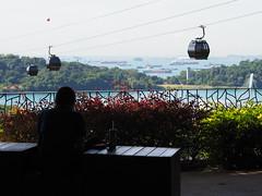 Singapore 2017 (14) (prapb) Tags: singapore candid streetphoto city urban alone lonely alienation silhouette