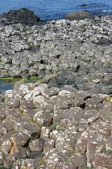IMG_3663 (avsfan1321) Tags: ireland northernireland countyantrim unitedkingdom uk giantscauseway causewaycoast wildatlanticway basalt rock stone blackbasalt column columnarjointing columnarbasalt ocean atlanticocean landscape