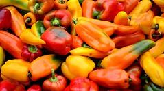 Colorful Peppers (pjpink) Tags: soj southside southofthejamesmarket farmersmarket market foresthillpark rva richmond virginia october 2017 fall pjpink 2catswithcameras