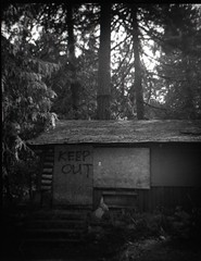 borded up (Beaulawrence) Tags: film grain analog lomo lomography debonair plasticfilmtastic plasticlens toycamera mediumformat 120film kodak tmax400 abandoned ruraldecay hopebc britishcolumbia bordedup cabin keepout forest
