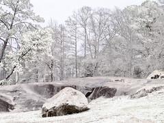 Snow on the Rocks (Thomas Vasas Photography) Tags: nature winterscapes snowscapes scenics landscapes wonter seasons snow weather flatrockpark columbus georgia