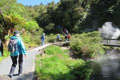 2017-110718 (bubbahop) Tags: 2017 rotorua newzealand waimangu volcanic valley