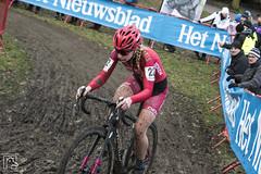 Scheldecross 2017 110 (hans905) Tags: canoneos7d cyclocross cross cx scheldecross mud nomudnoglory veldrijden veldrit wielrennen wielrenner wielrenster womenscycling