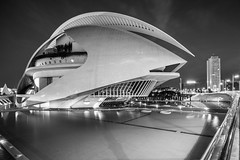 Sleeping Giant (McQuaide Photography) Tags: valencia spain europe sony a7rii ilce7rm2 alpha mirrorless 1635mm sonyzeiss zeiss variotessar fullframe mcquaidephotography lightroom adobe photoshop tripod manfrotto city urban architecture outdoor outside building longexposure night nightphotography cityofartsandsciences ciutatdelesartsilesciències ciudaddelasartesylasciencias modern modernarchitecture architecturalcomplex 12treasuresofspain santiagocalatrava attraction tourism travel touristdestination famousplace icon iconic futuristic future science scientific operahouse entertainment opera 2005 queensofíapalaceofthearts performingarts dragados necso palaudelesartsreinasofia wideangle pov blackandwhite blackwhite bw mono monochrome