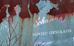 Assorted Chocolates (Doris Burfind) Tags: macleansautowreckers abstract rust metal truck sign words blueandrust paint decay automobile scrapyard