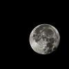 supermoon part I (fe2cruz) Tags: supermoon moon astrophotography sigmaaf50150mmf28exdcoshsm apo sigma 50150mm 28 handheld black apo50150mmf28exdchsm 201718supermoontrilogy