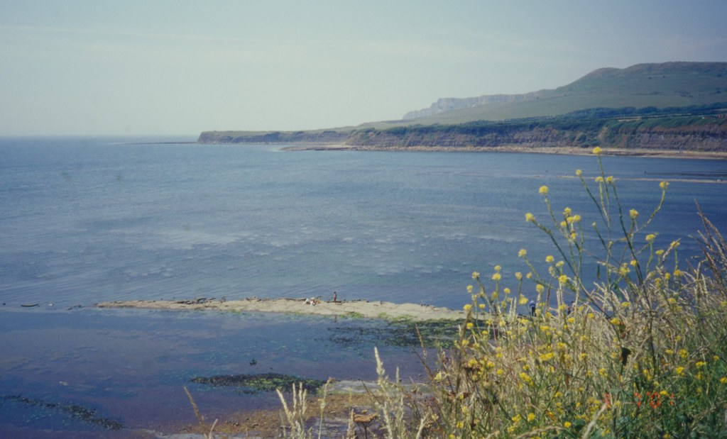 Kimmeridge Bay, Dorset 3 7 2001