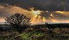 'Backalong' (3) - When the Heavens Opened (suerowlands2013) Tags: bodminmoor minions secornwall tinmine coppermine crepuscularrays sunset endoftheday clouds trees moorland spoiltips dusk