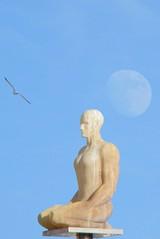 Massena Mann Mond Möwe (diezin) Tags: diezin flickr jaumeplensa kunst kunstwerk laconversation möwe mann mond nizza placemassena siebenkontinente siebenskulpturen sitzen skulpturen