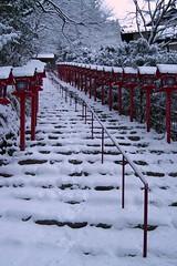 貴船神社(Kifune Shrine) 雪景色-2 (転倒虫) Tags: 京都 日本 貴船神社 雪 雪景色 朝 神社 kyoto japan snow kifunejinjya shrine 冬 winter snowscape 静寂 silence quiet 白 white
