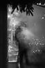 Steamy Christmas Market 2 (pni) Tags: monochrome vapor vapour spruce needles stand unsharp blur focus bokeh light bubble lamp christmas tuomaanmarkkinat tomasmarknaden helsinki market helsingfors finland suomi pekkanikrus skrubu pni