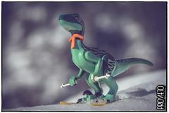 Velociraptor alpinus