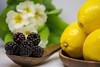 DSC_0158 (StefGCarter) Tags: lemon blackberry blackberries stilllife