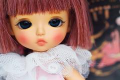 Yuu arrived home yeaster day :-) (Emmie Ame) Tags: taipeispeciallimitedveryunatan latiyellow yuna lati latidoll bjd doll toy balljointeddoll