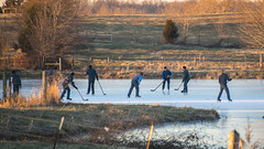 New Year's Day, Amish Young Men Come Out to Play (sniggie) Tags: amish barrencounty kentucky newyearsday plainfolk frozenpond hockey winter ice pond