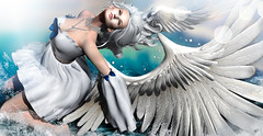 The Swan rising (meriluu17) Tags: avaway itgirls ersch swan bird angel angels surreal rising wing wings feather water splash blue white people fairy fairytale fae