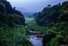 Siruvani Scape (Deepu Cyriac) Tags: siruvani siruvanireserveforest nature wildlife westernghats travel kerala keralaforest indianforest landscape green palakkad mannarkkad