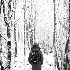 (Philipp Sarmiento) Tags: philipp sarmiento landscape people canon hawaii onenaturesuplly supply bavaria lanschaft sky mood winter snow regensburg ratisbona