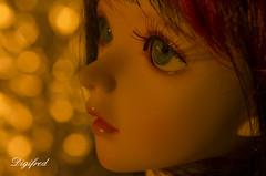 Lit by Candlelight (Digifred.nl) Tags: macromondays litbycandlelight digifred 2017 nederland netherlands pentaxk5 hmm macro macrophotography closeup bokeh candlelight kaarslicht portret portrait bjd doll