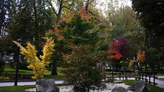 Otoño (Jusotil_1943) Tags: 171117 stone piedra otoño autumn