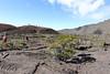IMG_5376RTJ (L'effet Péï) Tags: piton de la fournaise ile réunion volcan