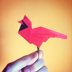 Cardinal by Robert J. Lang (Stefano Borroni (Stia)) Tags: origami natura cdoitalia piegarelacarta carta paper folding origamicdo2017 origamiart origamilove papiroflexia animali animals cardinal bird uccellino volatili uccello arte lang robertlang