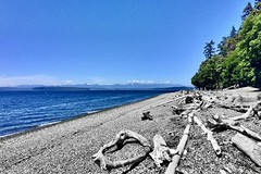 """Each time we don't say what we wanna say, we're dying."" ―Yoko Ono 🌊 (anokarina) Tags: appleiphone5s seattle washington wa pnw pacificnorthwest pugetsound fauntleroy driftwood shoreline coastline mountains horizon skyline lincolnpark gatewood colorsplash"