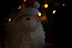 Merry Christmas (Tanja-Milfoil) Tags: 201217 5300 nikon 2017 sheep weihnachtsschaf schaf frohesfest froheweihnachten merrychristmas merry