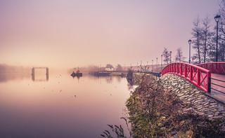Towpath walk on a foggy day