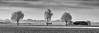 cold and clear (++sepp++) Tags: bayern deutschland landscape landschaft landschaftsfotografie lechfeld rauhreif wetter winter heiter sonnig sunny graben de bavaria germany hoarfrost bw blackwhite monochrom einfarbig sw schwarzweis clear cold kalt weather bäume trees panorama alpen alps