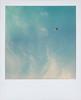 ... (Maggie J Lee) Tags: california marin headlands rodeobeach coast northerncalifornia beach winter polaroid sx70 polaroidoriginals600 landcamera kite moon sky clouds