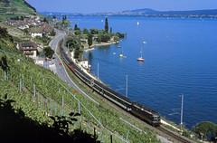 Jurafuß- und Seenlinie (trainspotter64) Tags: eisenbahn zug train treno tren trein railroad railway spoorwegen vlak schweiz suisse svizzera bahn sbb cff ffs lokomotive lok intercity ic see bielersee bern re44 weinberg