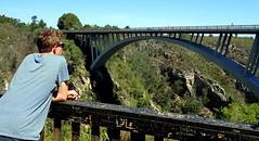 Storms River Bridge, Tsitsikamma National Park, Garden Route, Eastern Cape, South Africa (Pranav Bhatt) Tags: southernafrica stormsriverbridge tsitsikammanationalpark gardenroute easterncape southafrica