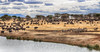 Meeting Point (AnyMotion) Tags: africanbuffalo afrikanischerbüffel synceruscaffer plainszebra steppenzebra equusquagga landscape landschaft landschaftsaufnahme 2015 anymotion tarangirenationalpark tanzania tansania africa afrika travel reisen animal animals tiere nature natur wildlife 7d2 canoneos7dmarkii ngc npc