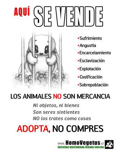 "animalismo-HV-CARTA • <a style=""font-size:0.8em;"" href=""http://www.flickr.com/photos/126890823@N02/39534186532/"" target=""_blank"">View on Flickr</a>"