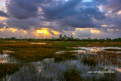 Stormy Marsh at Pine Glades (tclaud2002) Tags: storm stormy sun sunrise clouds cloudy sky weather marsh water grass nature mothernature landscape horizon outdoors pineglades naturalarea pinegladesnaturalarea jupiter florida usa