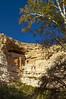 DSC_0093-95 montezumas castle hdr 850 (guine) Tags: montezumascastle ruins building rocks trees plants hdr qtpfsgui luminance