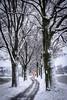 Räumdienst (karo.perez73) Tags: winter snow allee clearing