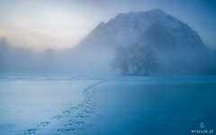 Chill (Wide) (Wim Air) Tags: ice frozen lake grimming snow tracks foodprints