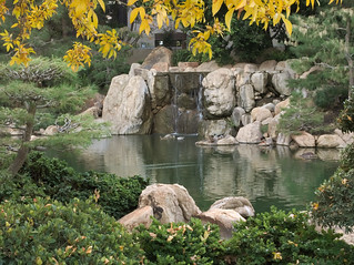 Waterfall at Japanese Friendship Garden of Phoenix