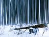 Twisted Reality II. (icarium82) Tags: carlzeissplanar35mmf2 landscape winter forest motionblur sonydscrx1rm2 photoshop snow erzgebirge nature anisotropicdiffusion landschaft schnee wald geometry brokenlog germany oldgods giantess