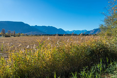 Im Land der blauen Berge  (2) (berndtolksdorf1) Tags: deutschland bayern oberbayern murnauermoos berge blau himmel outdoor landschaft landscape